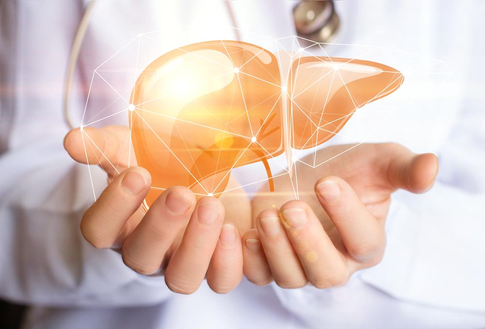 Composto de ginkgo mostra efeito anti-ferroptose na doença hepática gordurosa não alcoólica induzida por dieta rica em gordura
