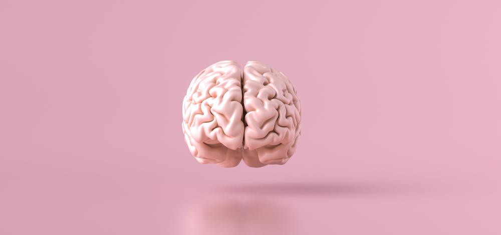 7 alimentos essenciais para melhorar o funcionamento do cérebro